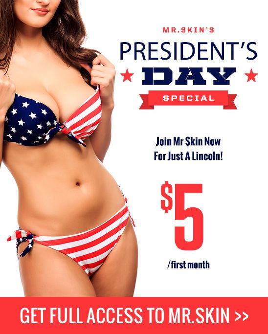 Mr. Skin President Day weekend sale!