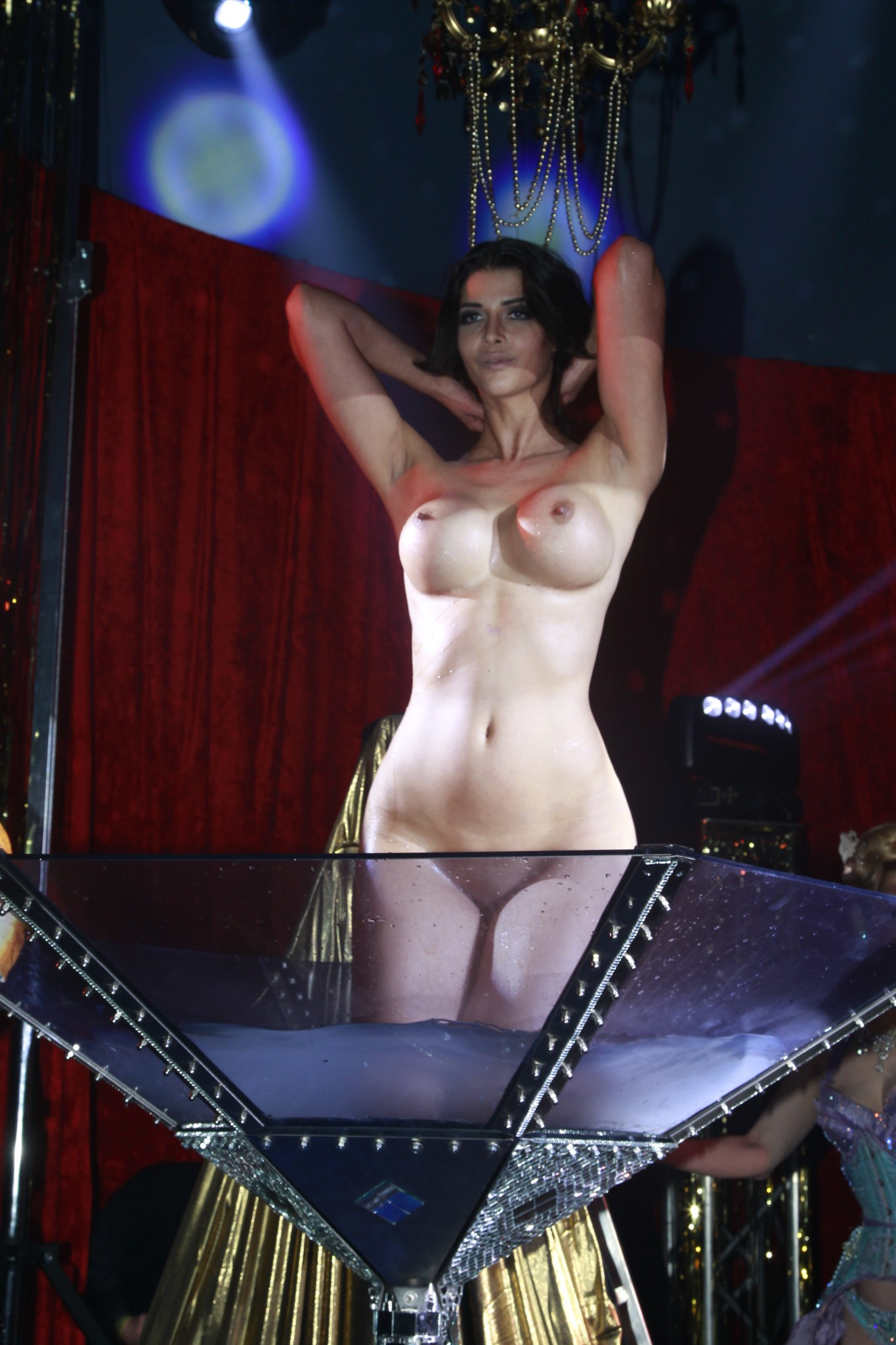 micaela-schafer-naked-at-audi-night-party-11