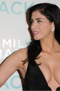 Something is. sarah silverman nipple slip have