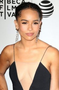 zoe-kravitz-cleavage-at-vincent-n-roxxy-premiere-tribeca-15