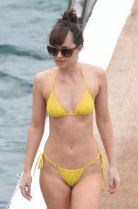 dakota-johnson-topless-cameltoe-see-through-in-bikini-12