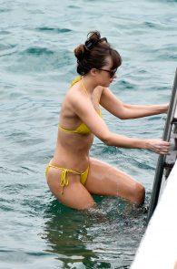 dakota-johnson-topless-cameltoe-see-through-in-bikini-13