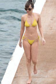 dakota-johnson-topless-cameltoe-see-through-in-bikini-24