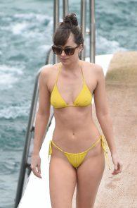 dakota-johnson-topless-cameltoe-see-through-in-bikini-25