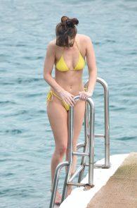 dakota-johnson-topless-cameltoe-see-through-in-bikini-30
